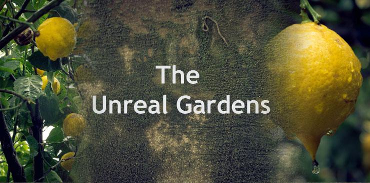 unreal_gardens_captions_001