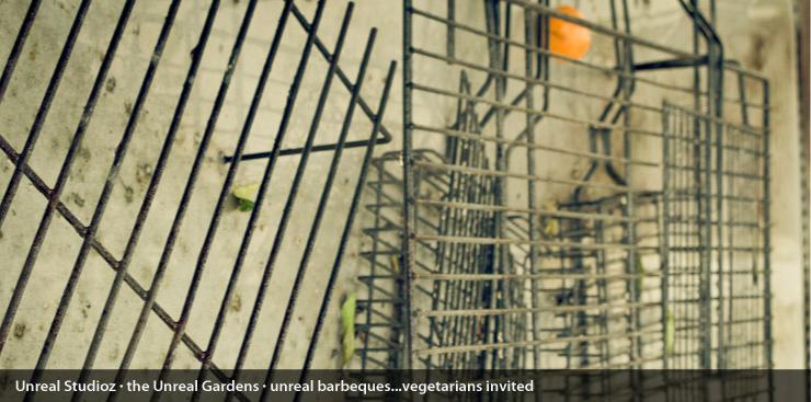 unreal_gardens_captions_003