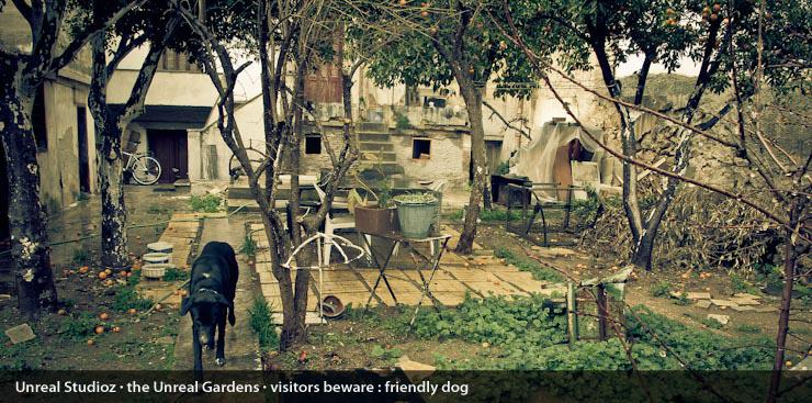 unreal_gardens_captions_005