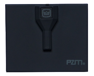 crown_pzm6d_iunreal_mic_0004